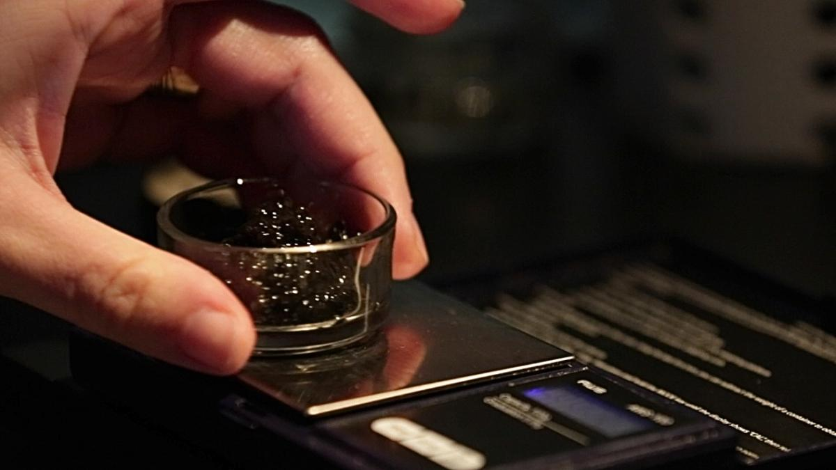 Sturgeon caviar is measured on a gram scale at the Russian restaurant Kachka in Portland, Ore., where customers pay $84 for just a half-ounce of the best sturgeon caviar on the menu. It comes from farms to protect wild stocks. Top-shelf sturgeon caviar ca
