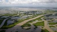 Canals created for navigation and oil and gas pipelines cut through the marsh off the coast of Louisiana, seen in 2010.
