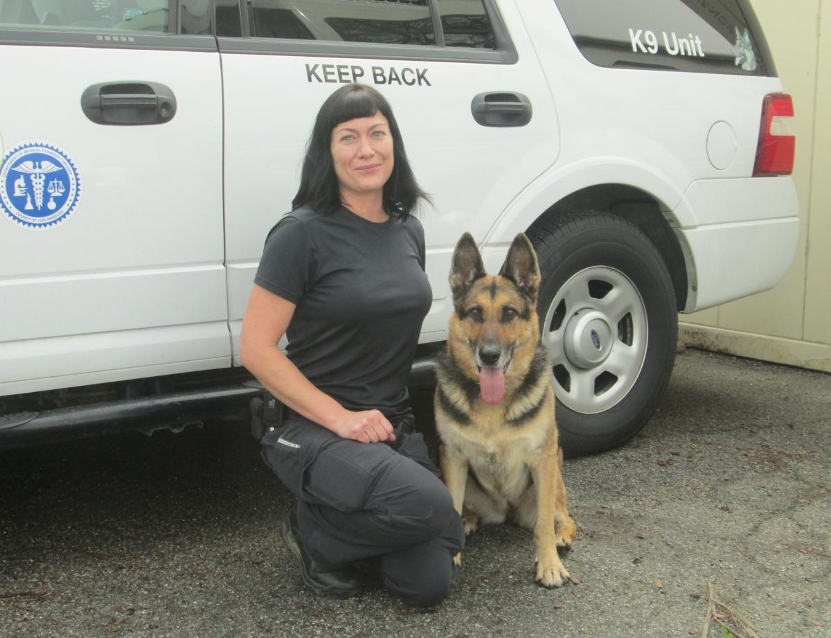 K-9 Handler Karina Peck and Indiana Bones in front of the coroner's vehicle at the Los Angeles County coroner's office.