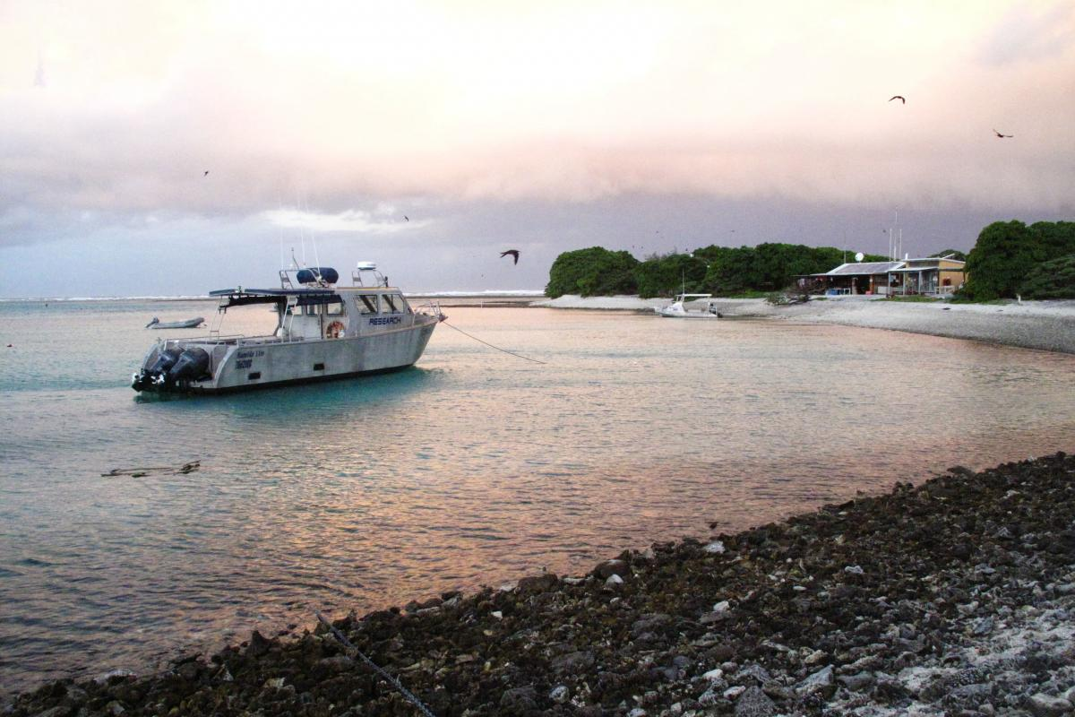 The sun sets at One Tree Island. The research Caldeira's team is doing might help save small patches of coral reefs, but it would be impossible to scale up a chemical treatment to protect whole reefs from increasing ocean acidity.