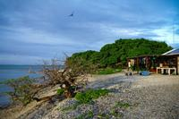 Researchers from the Carnegie Institution for Science spent a month at a remote research outpost — One Tree Island, at the southern end of the Great Barrier Reef — to study how changing ocean acidity is affecting coral reefs.