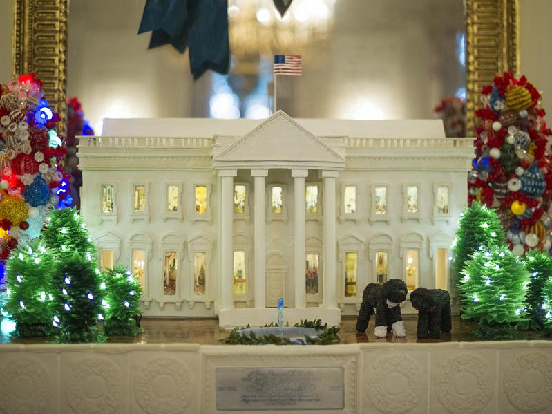Every year, on the day after Thanksgiving, almost 100 volunteer decorators show up at the White House. They spend the next five days stringing garlands and hanging ornaments, making the White House sparkle for the holidays.