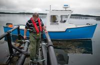 Thierry Chopin from the University of New Brunswick examines a raft that holds strings of seaweed. The seaweed grows around pens of farmed salmon and soaks up some of the nutrients that would otherwise pollute the Bay of Fundy.