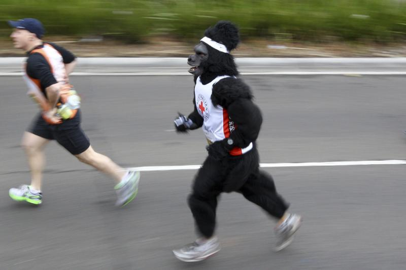 You don't need to run a marathon — or wear a gorilla suit — to get a discount on John Hancock's new life insurance program. But at least one of them may help.
