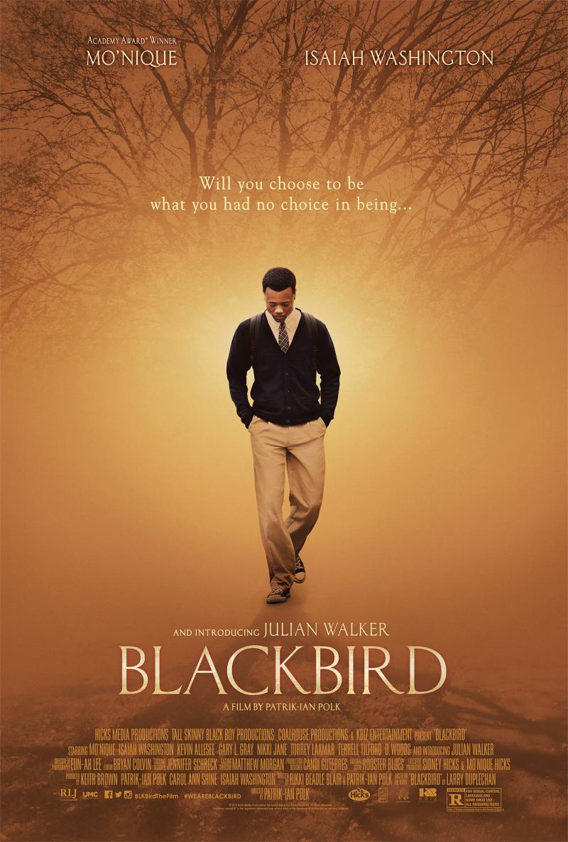 Blackbird is about a gay interracial romance set in the deep South.