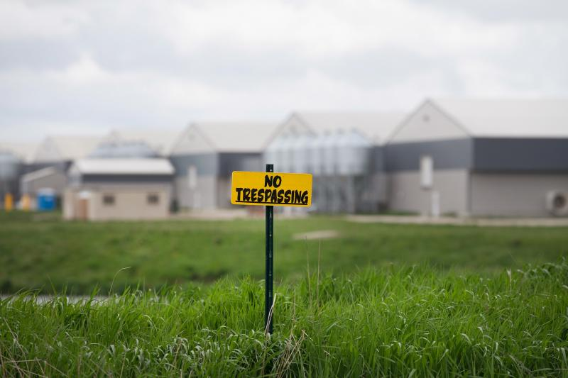 """No trespassing"" signs are posted on the edge of a field at a farm operated by Daybreak Foods near Eagle Grove, Iowa, which has been designated ""bio security area,"" on May 17."