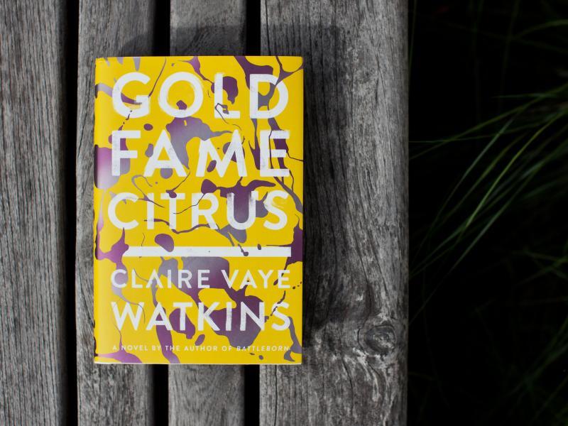 Gold Fame Citrus by Claire Vaye Watkins.