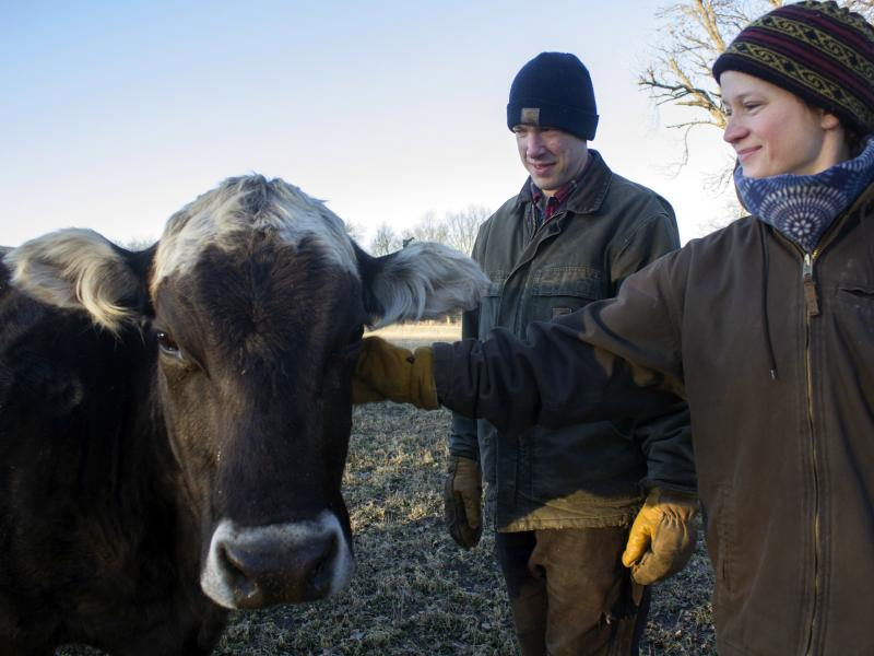 Kevin and Ranae Dietzel, owners of a small dairy herd near Jewell, Iowa, named their signature cheese after this cow, Ingrid.