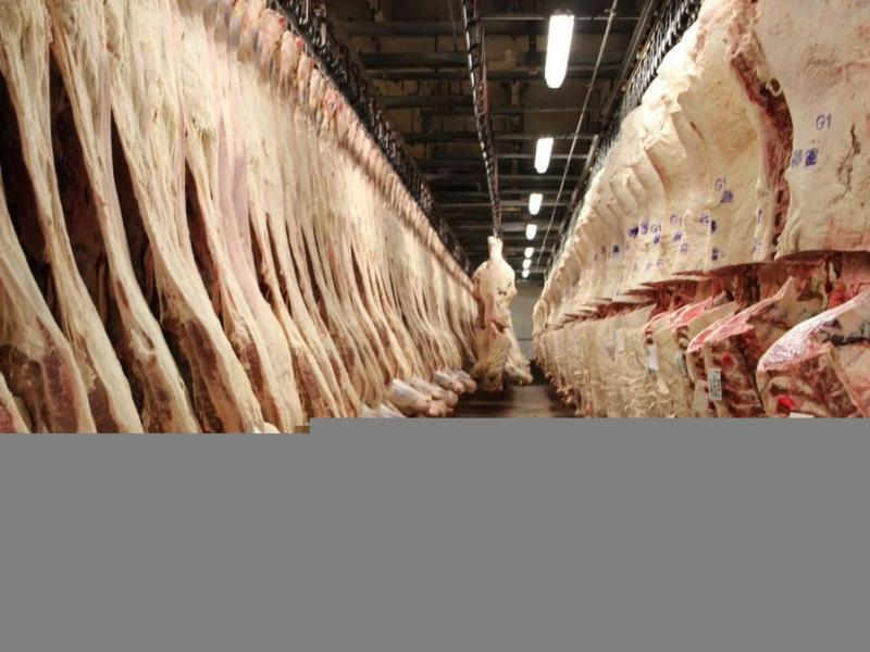 Beef carcasses hang in the sales cooler at the JBS beef plant in Greeley, Colo.