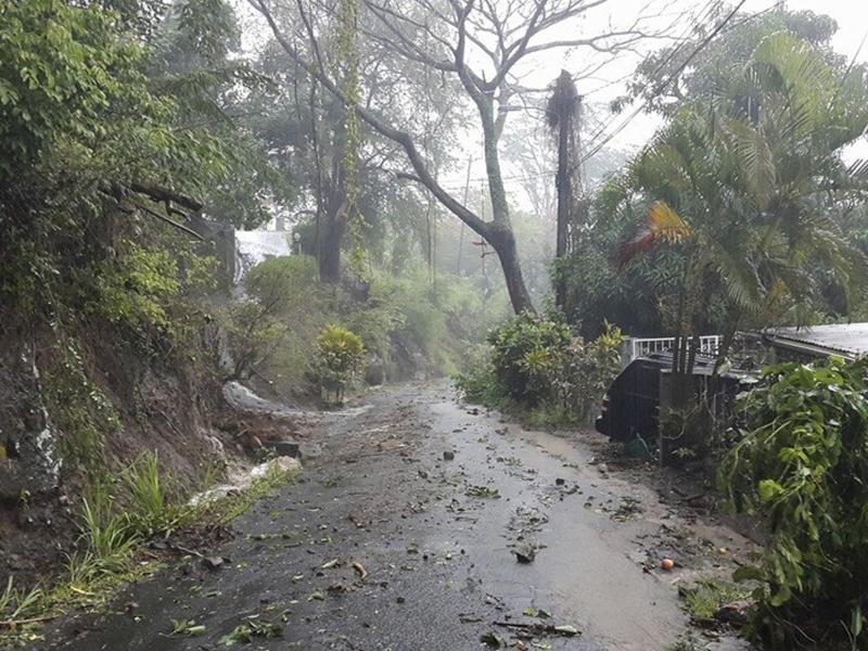 Debris covers a road after heavy rains from Tropical Storm Erika hit the Caribbean island of Dominica in this picture from Robert Tonge, Dominican Minister for Tourism and Urban Renewal, taken on Thursday.