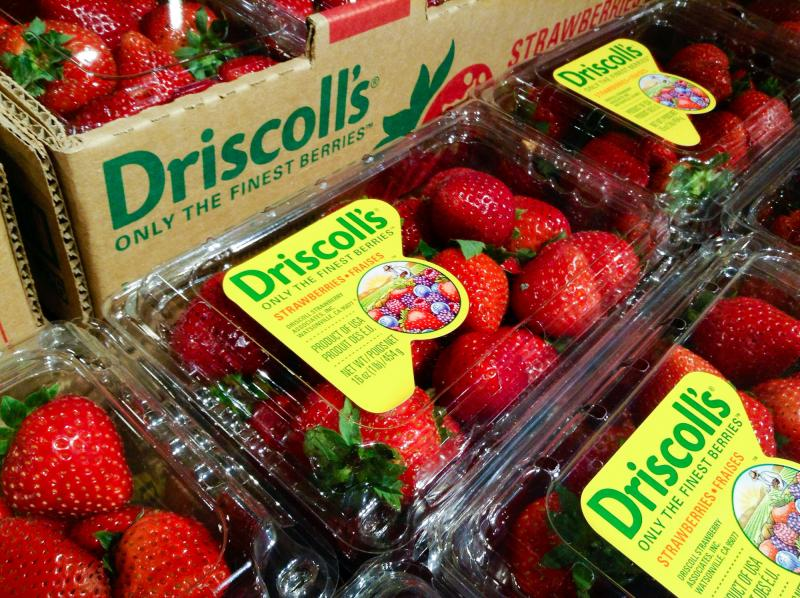 Driscoll's, the largest berry producer in the world, now grows about the same quantity of raspberries and strawberries in Mexico as it does in California. Many American producers have recently expanded their production to Mexico.