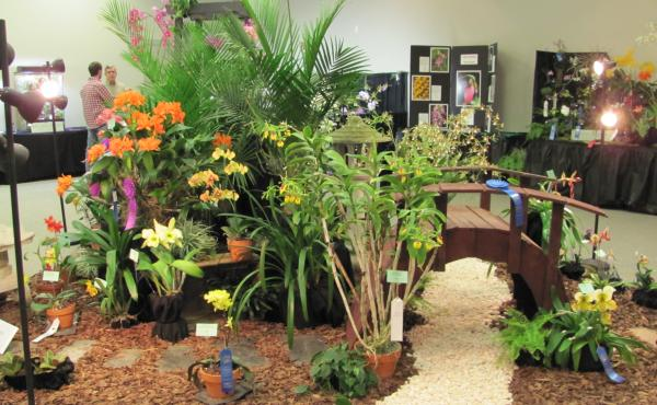 Triad Orchid Society Show and Sale