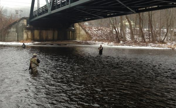 The expanding University of Connecticut is looking at the Farmington River as a water source, but some say recent weather fluctuation paints an uncertain picture for the river.