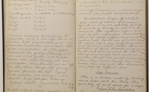 An excerpt from Victor Alfred Lyon's notebook.