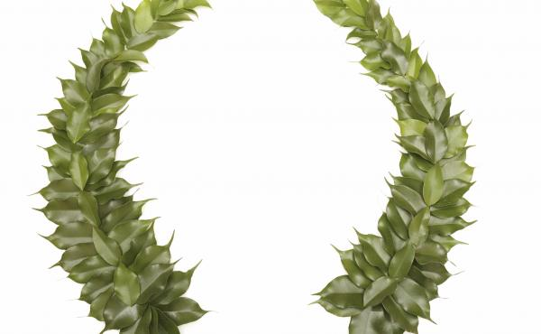 Laurels: perfect for the poet laureate on your holiday list.