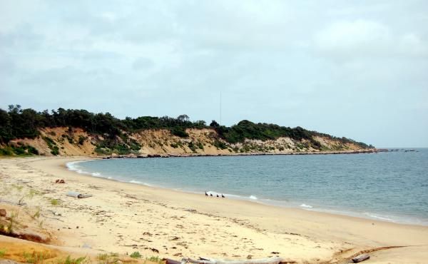 "Plum Island has roughly four miles of beaches"" — including along this bay below the decommissioned gunnery stations of Fort Terry."