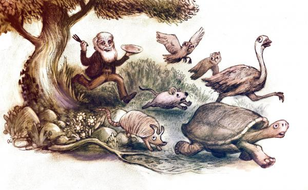 "Scientists who eat the plants and animals they study are following in the tradition of Charles Darwin. During the voyage of The Beagle, he ate puma (""remarkably like veal in taste""), iguanas, giant tortoises, armadillos. He even accidentally ate part of a"