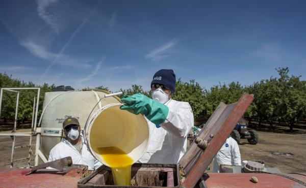 A worker pours a bucket of pesticide into a machine to be sprayed on almond trees at Del Bosque Farms Inc. in Firebaugh, Calif., on April 6, 2015. California and Washington already have adopted, through state regulation, many of the rules that the EPA now
