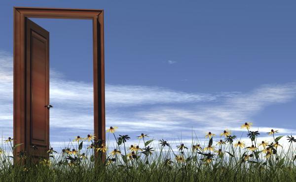 Wooden door in the grass with flowers