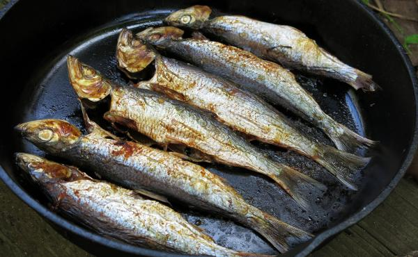 Herring are delicious, with flaky, mild meat and oil that sizzles on their skin when grilled over a flame. Chefs and ocean advocates have been promoting the environmental and health benefits of eating small fish like this. But the case of the San Francisc