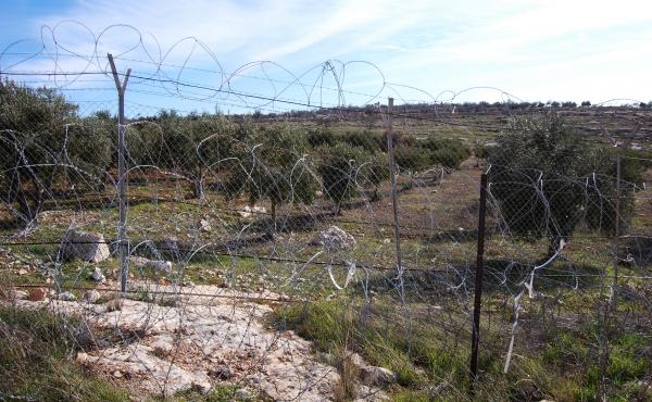 This fence enclosing part of the Israeli settlement of Tekoa was breached by a Palestinian attacker last month. Some Israel settlers want better fences. Other don't want to live inside barbed wire.