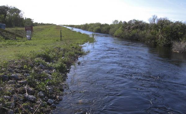 """This is one of several canals that will be filled to slow the movement of water through the Everglades, restoring an ecosystem environmentalist Marjory Stoneman Douglas called the """"river of grass.""""€"""