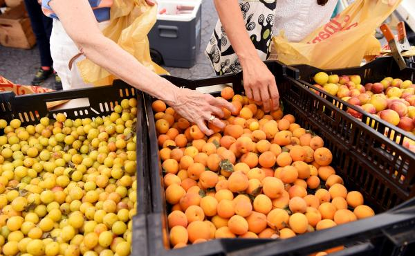 Shoppers sort through yellow plums at the Union Square Park greenmarket in New York City. A study of retailers in Manhattan finds that organic foods are much more common in affluent neighborhoods.