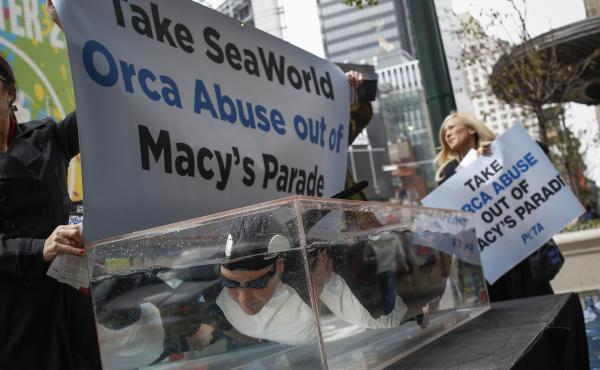 PETA activists demonstrated in 2013 against SeaWorld's planned float at the Macy's Thanksgiving Day Parade in New York City.