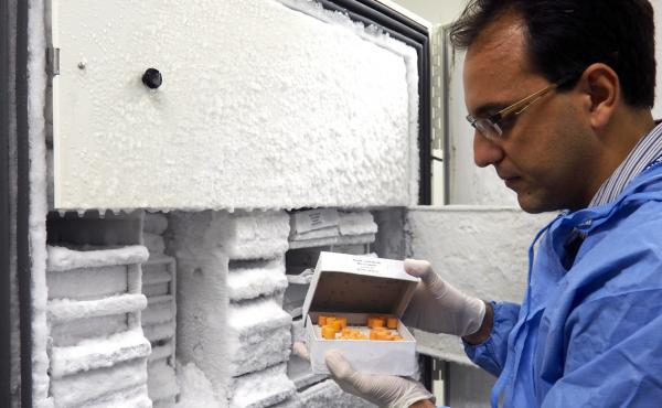 Lindomar Pena, a virologist at a lab in Recife, Brazil, holds a box of vials used to store samples of the Zika virus in huge freezers.