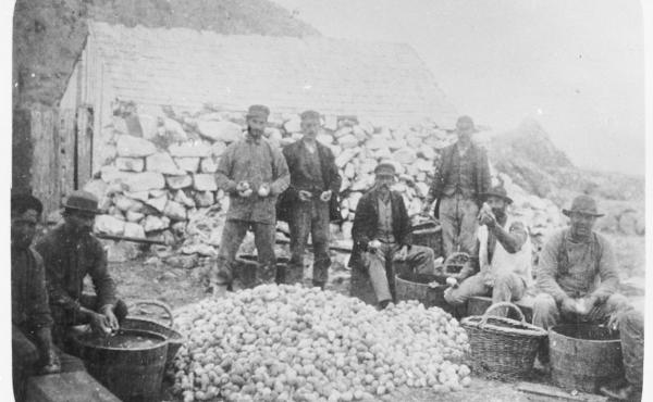 A group of men clean a week's haul of seabird eggs.