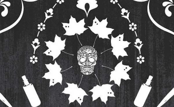JANE STEELE book cover.
