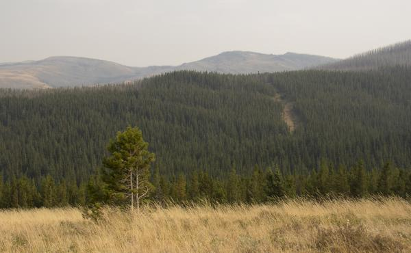 Solenex's proposed well site is on the land known as the Badger-Two Medicine.