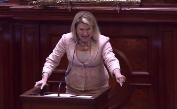 """Rep. Jenny Horne, a Republican who is part of Charleston's delegation to the Statehouse, gave a powerful speech about the Confederate flag Wednesday, calling it """"a symbol of hate."""""""