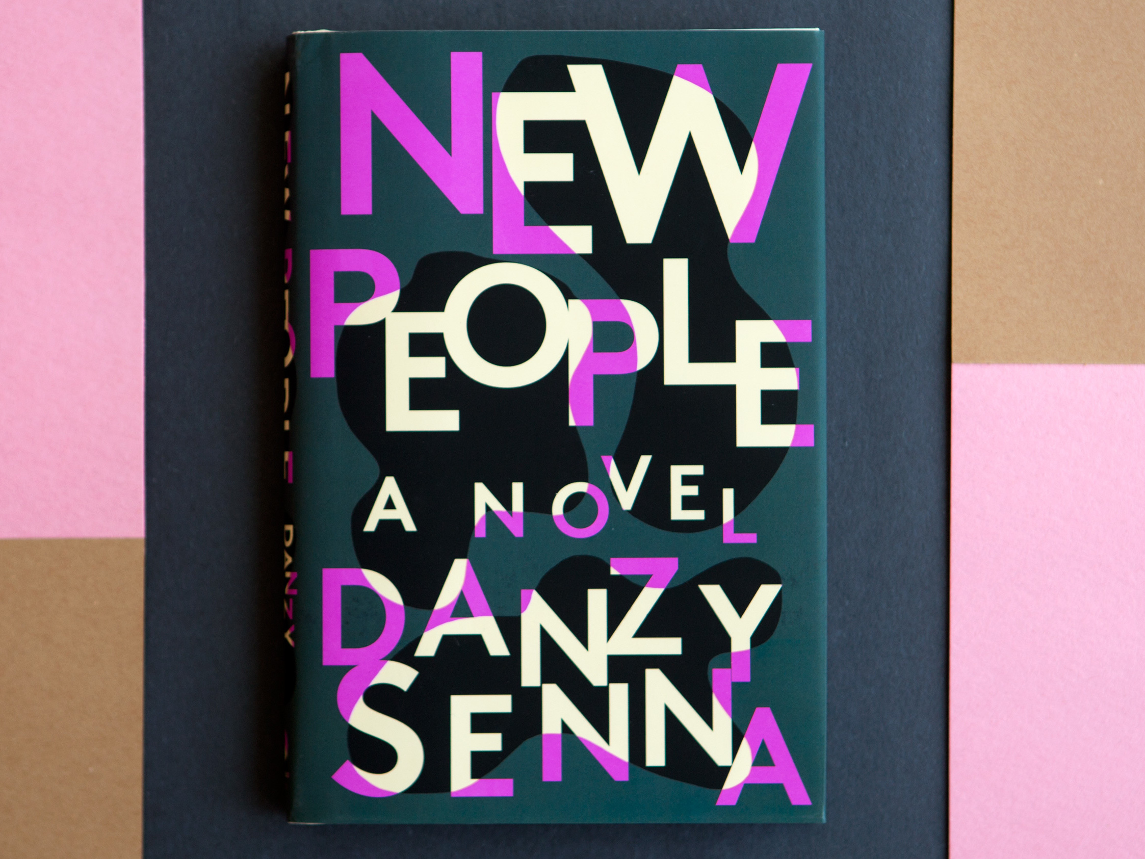 danzy senna color of love Danzy senna, author   her love life rebounds when she's assigned a story on  talented ivers greene, whom greta calls the great ghetto.