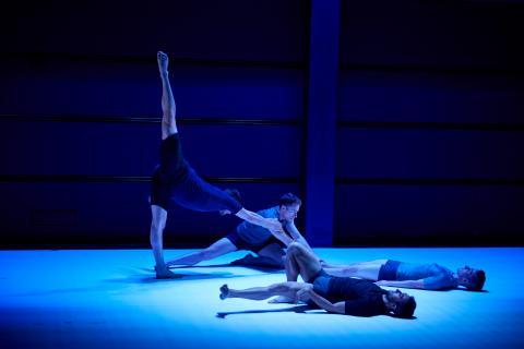 10 Hairy Legs (10HL) Dance Company
