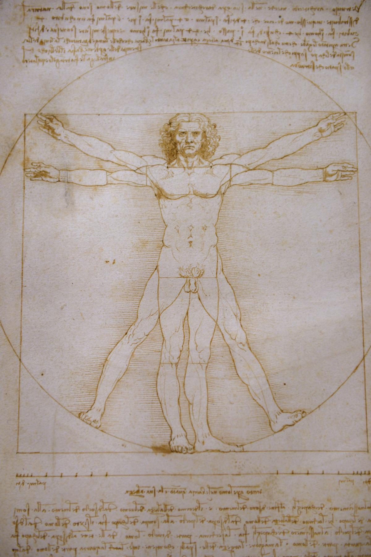"""One of Leonardo da Vinci's most famous drawings, """"Vitruvian Man,"""" is rarely displayed due to its fragility. It is part of the Louvre exhibition, following an unsuccessful, last-minute attempt to stop its transport from Italy to Paris."""