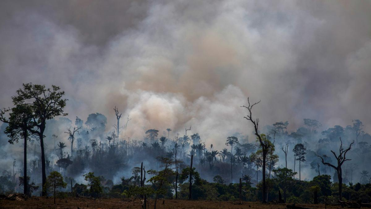 Smoke rises from the fires ravaging the Amazon basin in August. On Monday, Brazilian authorities released data revealing the highest rate of deforestation in the Amazon rainforest in a decade — partly due to a recent surge in wildfires throughout the re