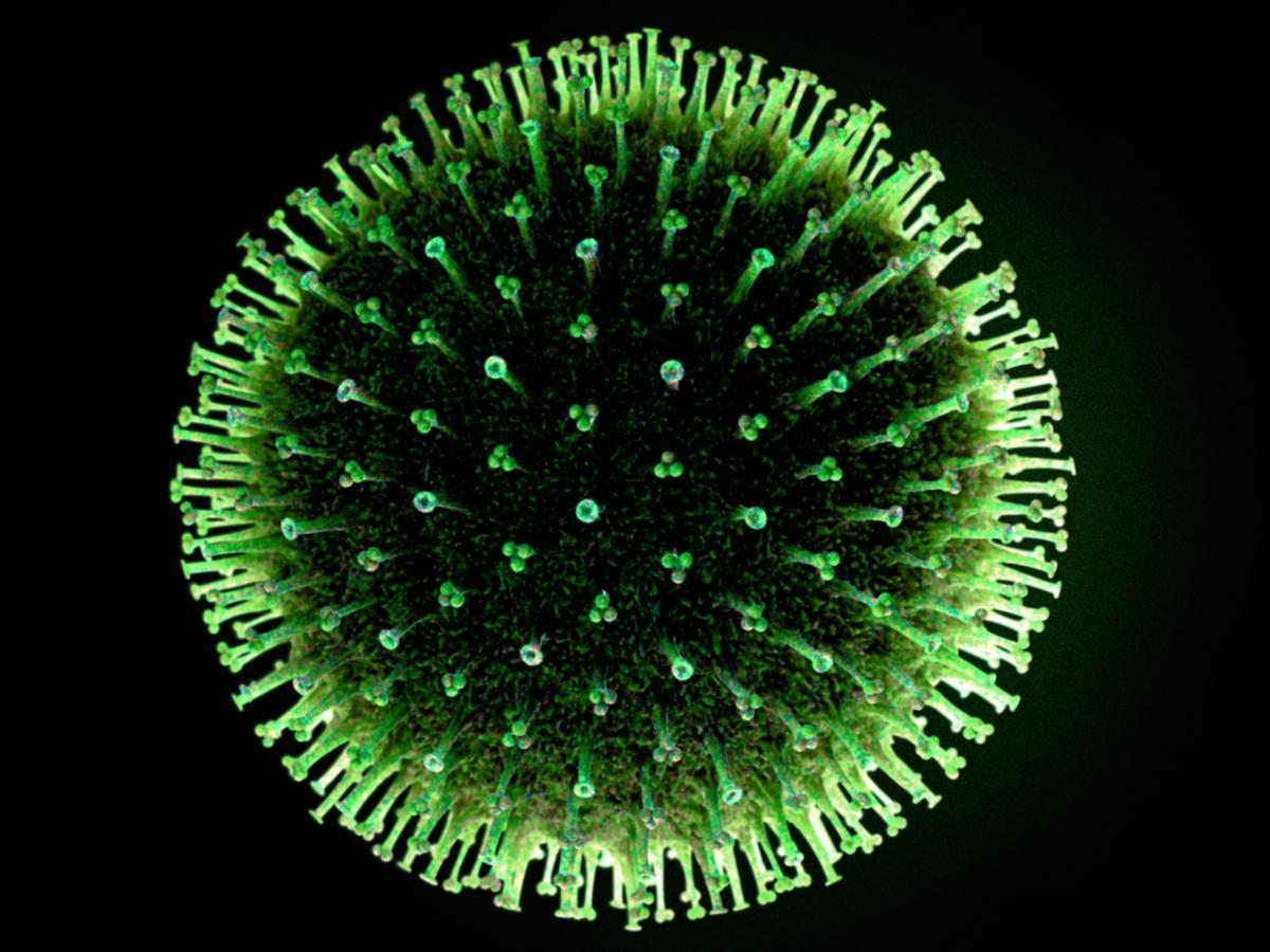 """The influenza virus. The small-molecule candidate drug described in Science this week binds to the """"stalks"""" of the proteins studding the virus' outer coat; in still-early experiments that seems to prevent the virus from infiltrating cells of the human lun"""