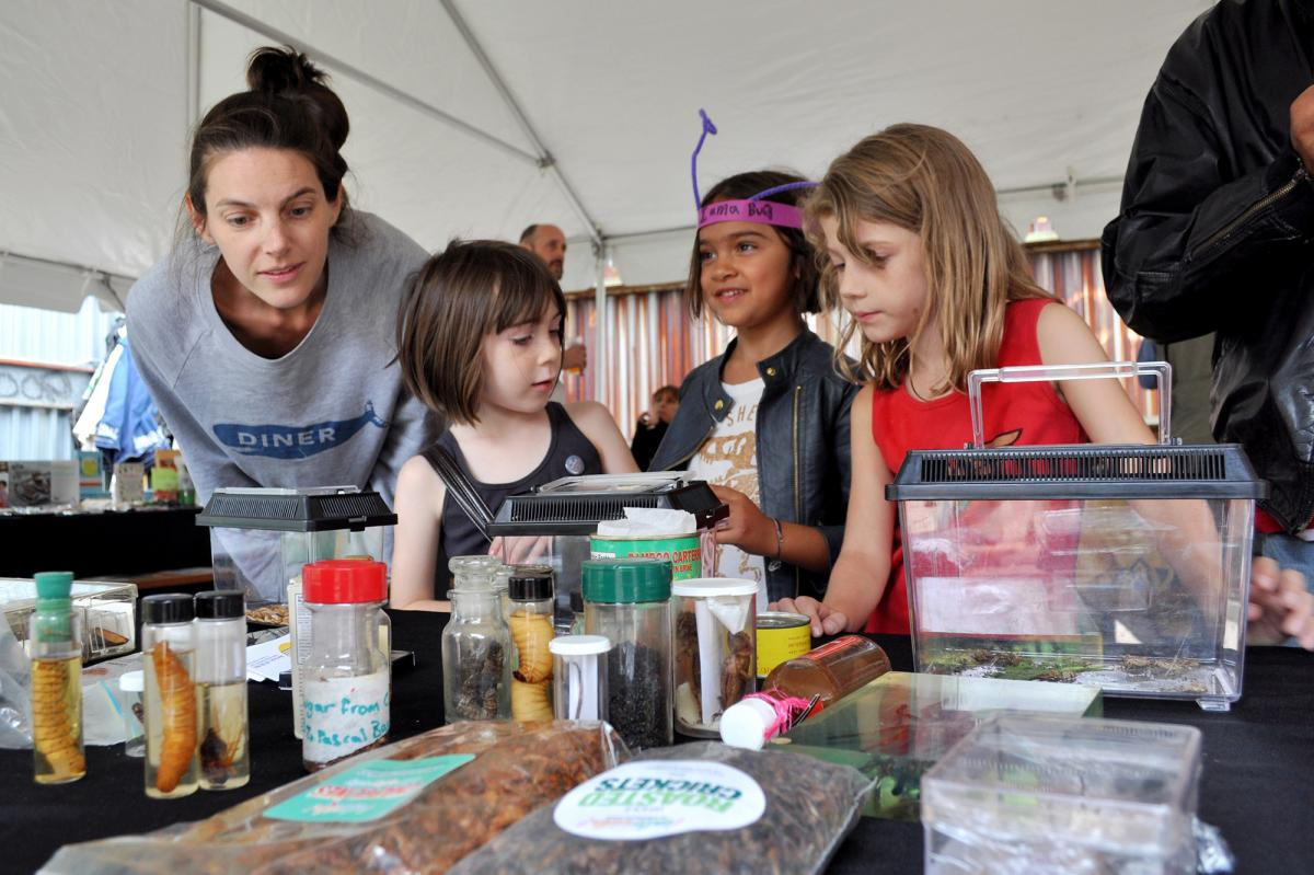 "Holly (second from left) and Tennessee (right) inspect mealworms at the Brooklyn Bugs Festival's ""petting zoo."""