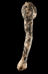 Kari Barba's tattooed silicone arm on display at the Natural History Museum of Los Angeles