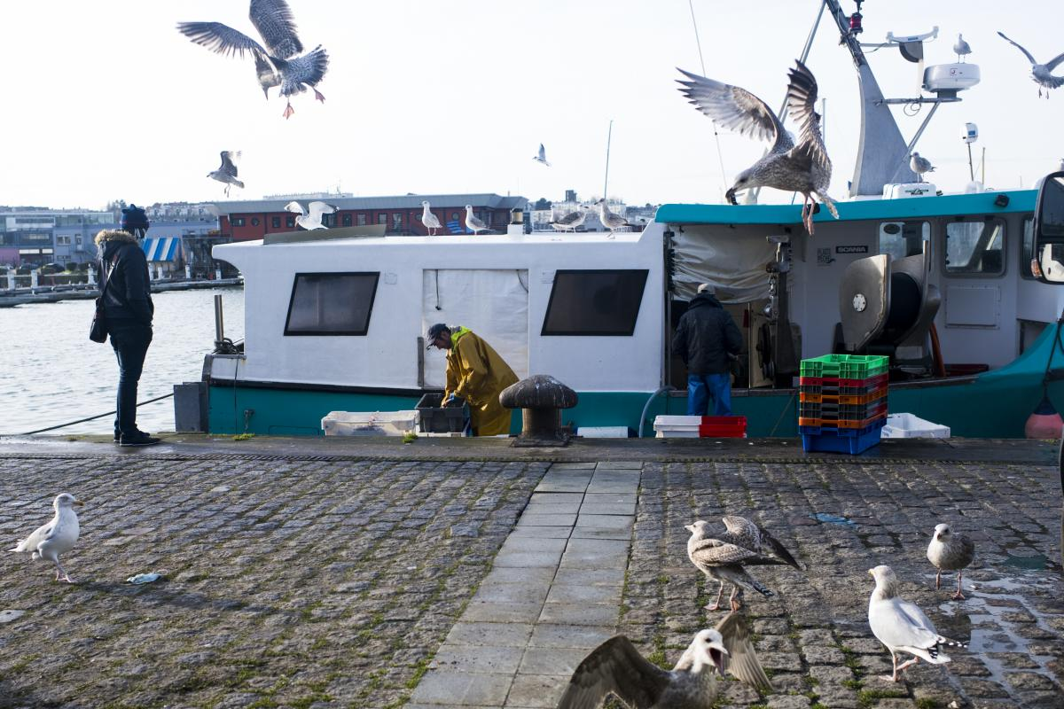 A dispute over fishing rights has been one of the main sticking points to a trade deal between the EU and the United Kingdom.