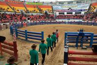 The judges, wearing green blazers, white gloves and cowboy hats, enter the 10,000-seat stadium and take their places before the bullfighting begins.