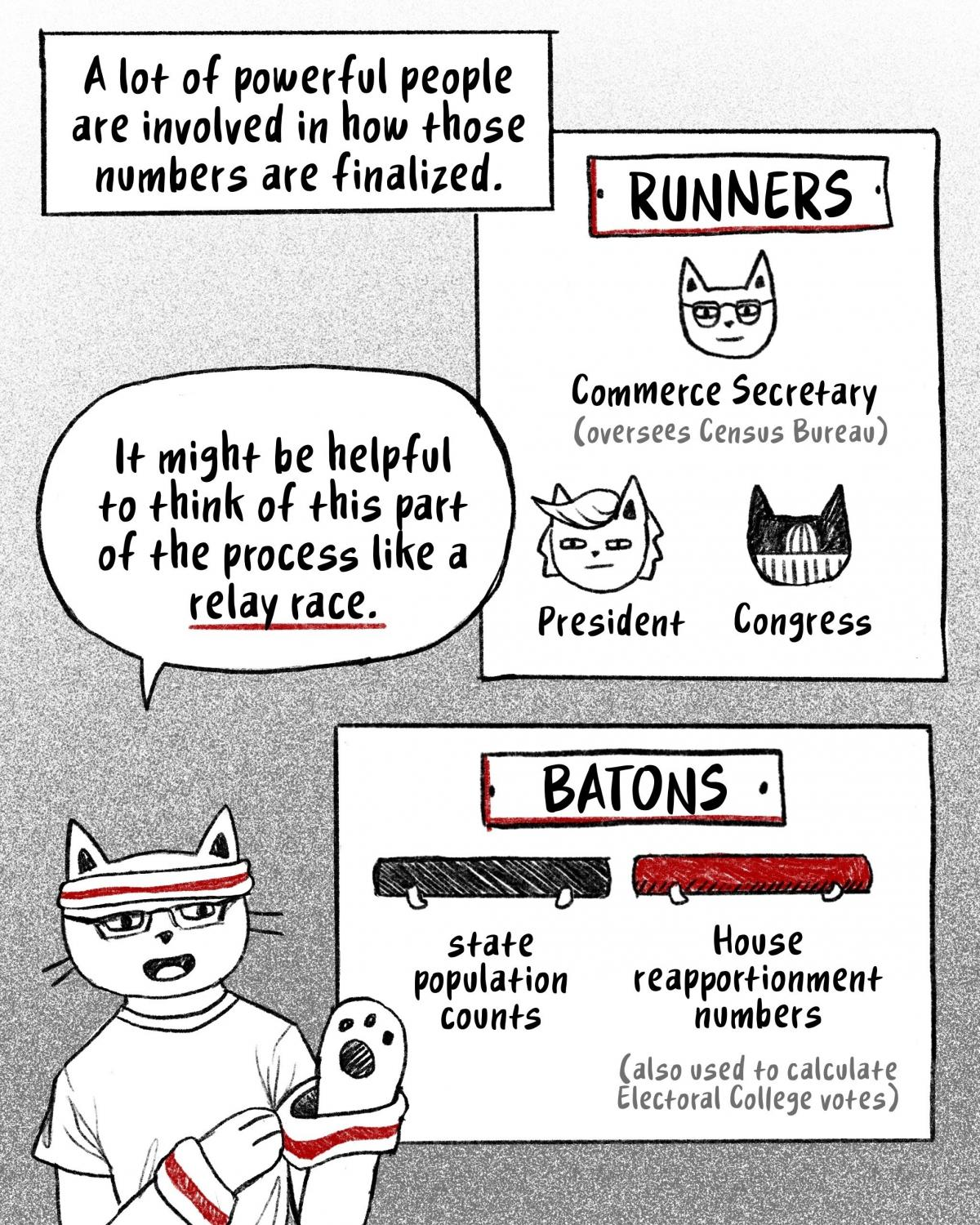 Think of the process as a relay race. The runners are the commerce secretary (who oversees the Census Bureau), the president and Congress. The batons are state population counts and House reapportionment numbers. [Image description- Hansi puts on an exerc