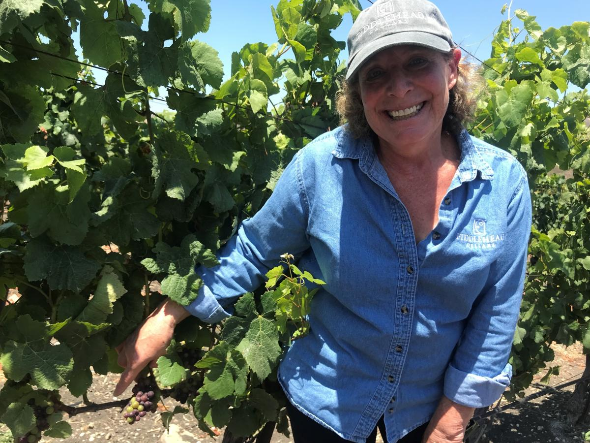 Vintner Kathy Joseph has learned that the fungicide she has been spraying on her grapes for decades could be drifting onto the cannabis, forcing her to use a more expensive and far less effective spray on the grapevines that are nearest to the cannabis fa