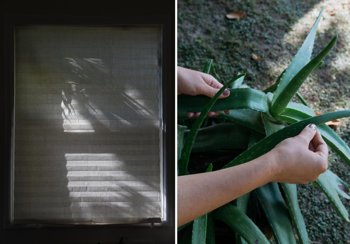 After her mom passed away years ago, Jeannine retrieved aloe plants from the family home to integrate into her yard today. Confronting the feelings triggered during past family traumas has been key to healing in many ways, Jeannine says.