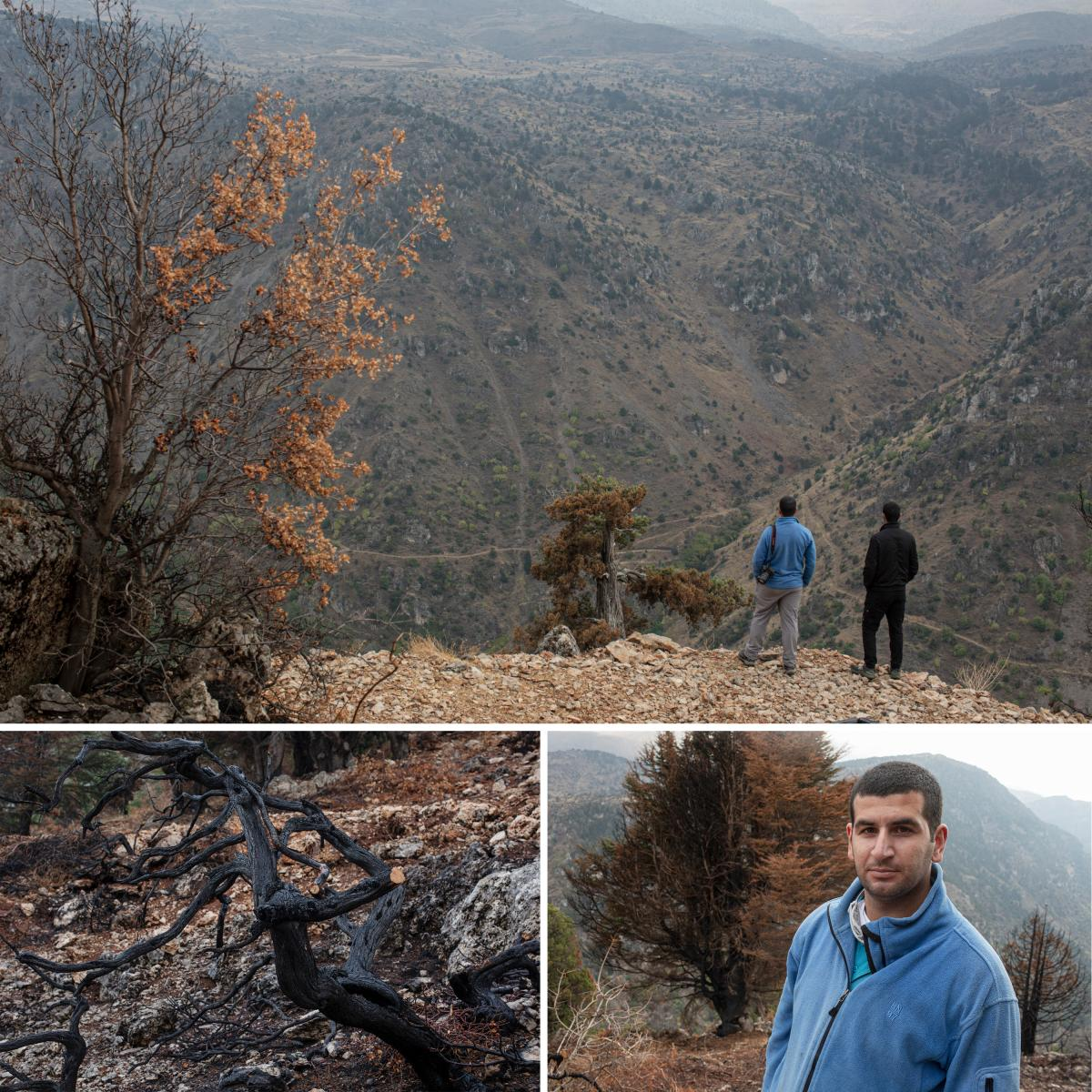 Khaled Taleb, 29, a conservationist who is the director and founder of Akkar Trail, and his brother Ali Taleb, 22, a botanist, look out over a valley from the site of a recent wildfire which burned a number of cedar trees, in the Mishmish forest. Left: A