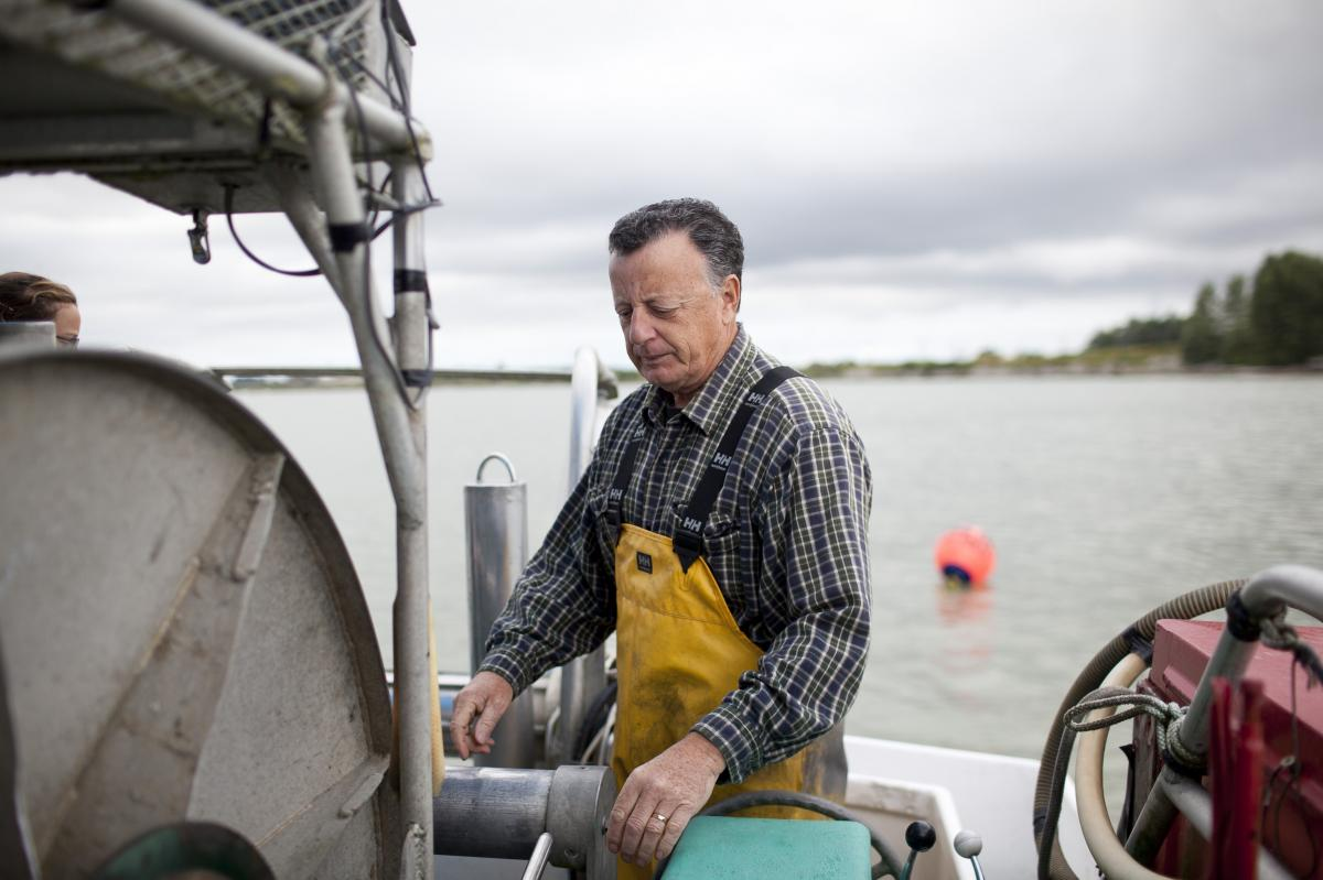 """Capt. Gordon Botkin, aboard the Miss Delta in the Fraser River near Vancouver, is helping researchers study the sockeye salmon population. The MSC recently certified sockeye as """"sustainable,"""" even though scientists argue that their population is declining"""