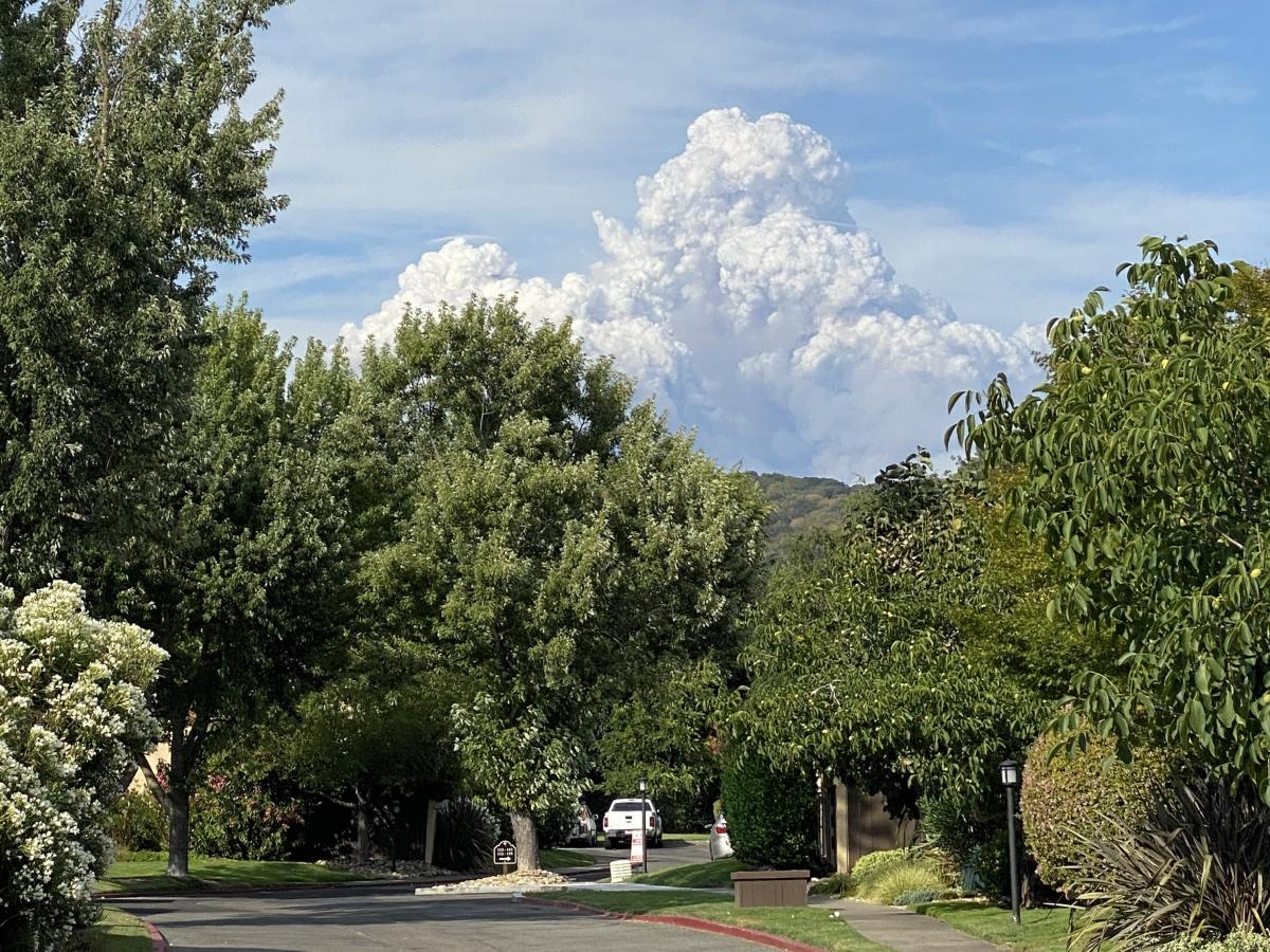 As fires broke out, it looked as though a volcano had erupted in front of my mom's house.