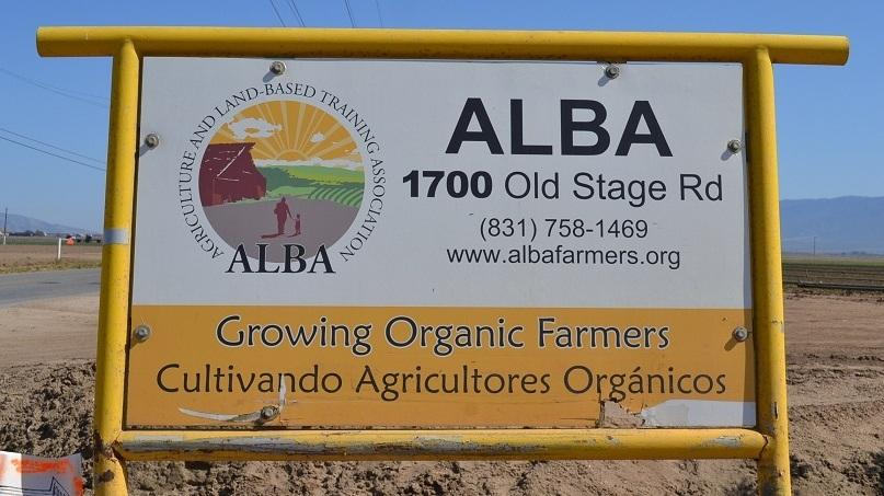 Farmers at ALBA learn about production, marketing, management and organic farming in order to start their own farming businesses.