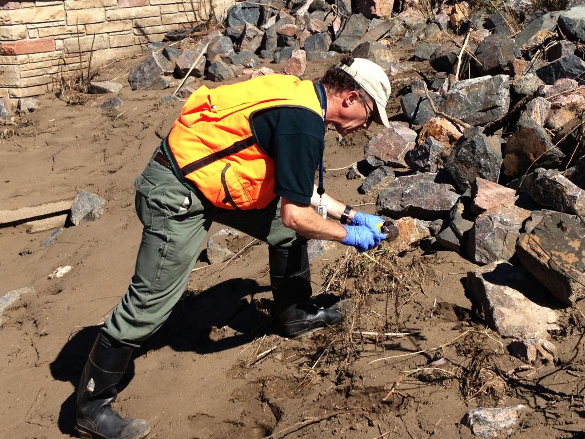 USGS scientist Geoff Plumlee samples mud and debris along Left Hand Creek in Longmont, Colo., for toxic metals that may have washed down from mines in the mountains.